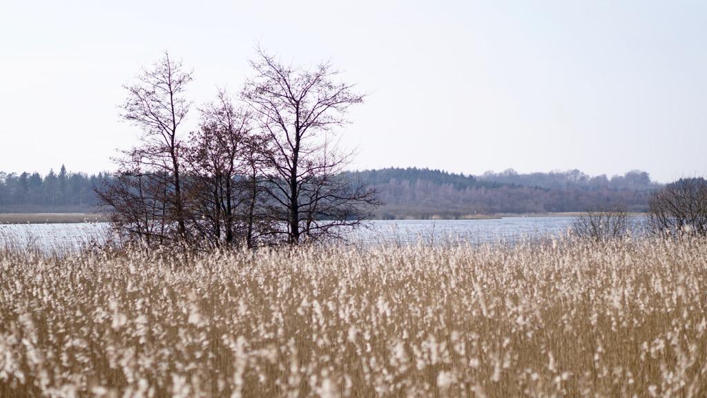 Krankesjön