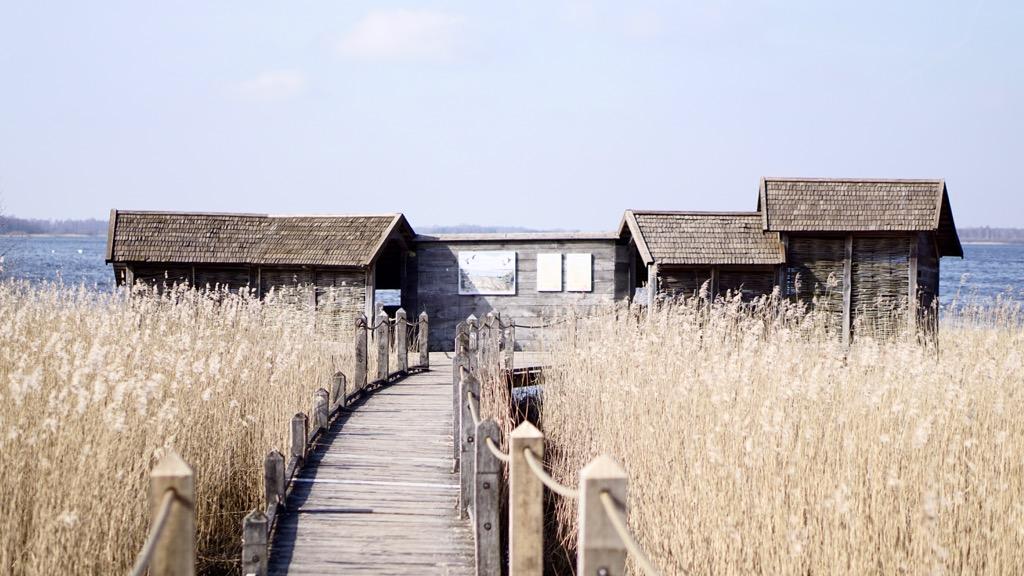 Fågelhus Krankesjön